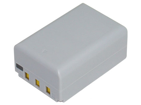 Replacement for CASIO NP-100 Digital Camera Battery(Li-ion 1950mAh)